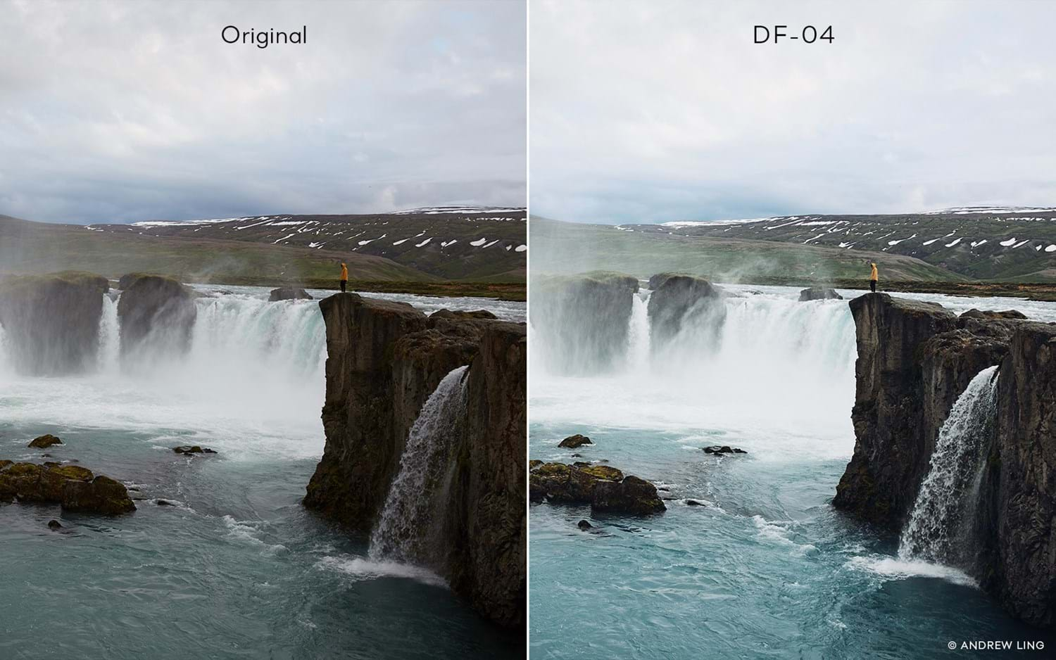 Capture One Raw Photo Editor Buy Style Latitude Deep Forest Df04