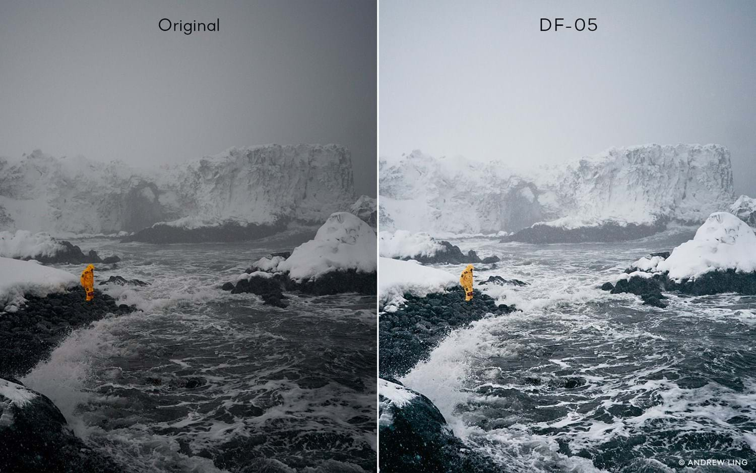 Capture One Raw Photo Editor Buy Style Latitude Deep Forest Df05