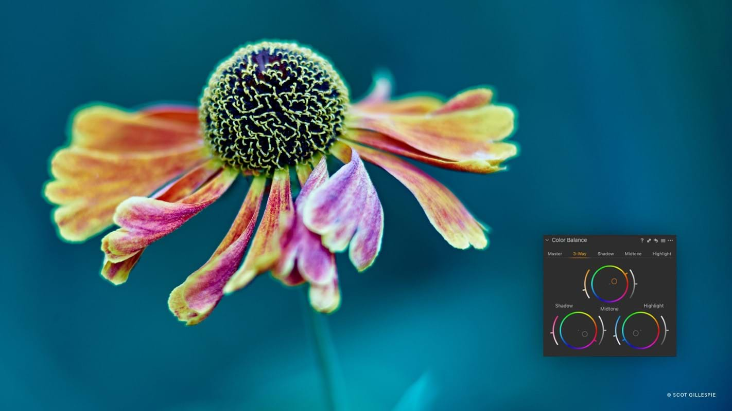 Capture One Raw Photo Editor Feature Page Color Controle Color Balance