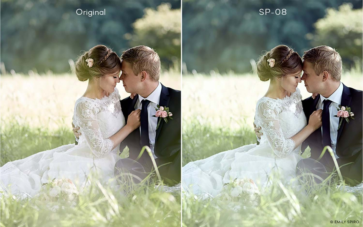 Capture One Raw Photo Editor Buy Style Spectrum Sp08